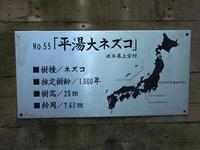 250919nezuko4.jpg